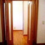 Puertas diseños especiales 22